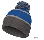 Holloway Graphite and Royal Beanie